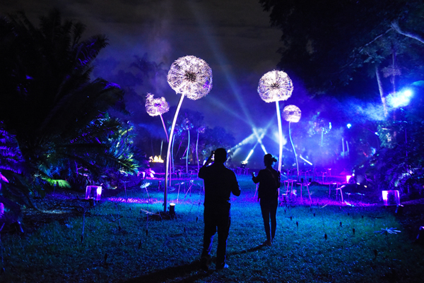 fairchild botanical night garden event